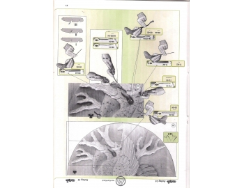 Koch_34-Revista KOCH 34 Aprende tallar aves alto relieve-3.