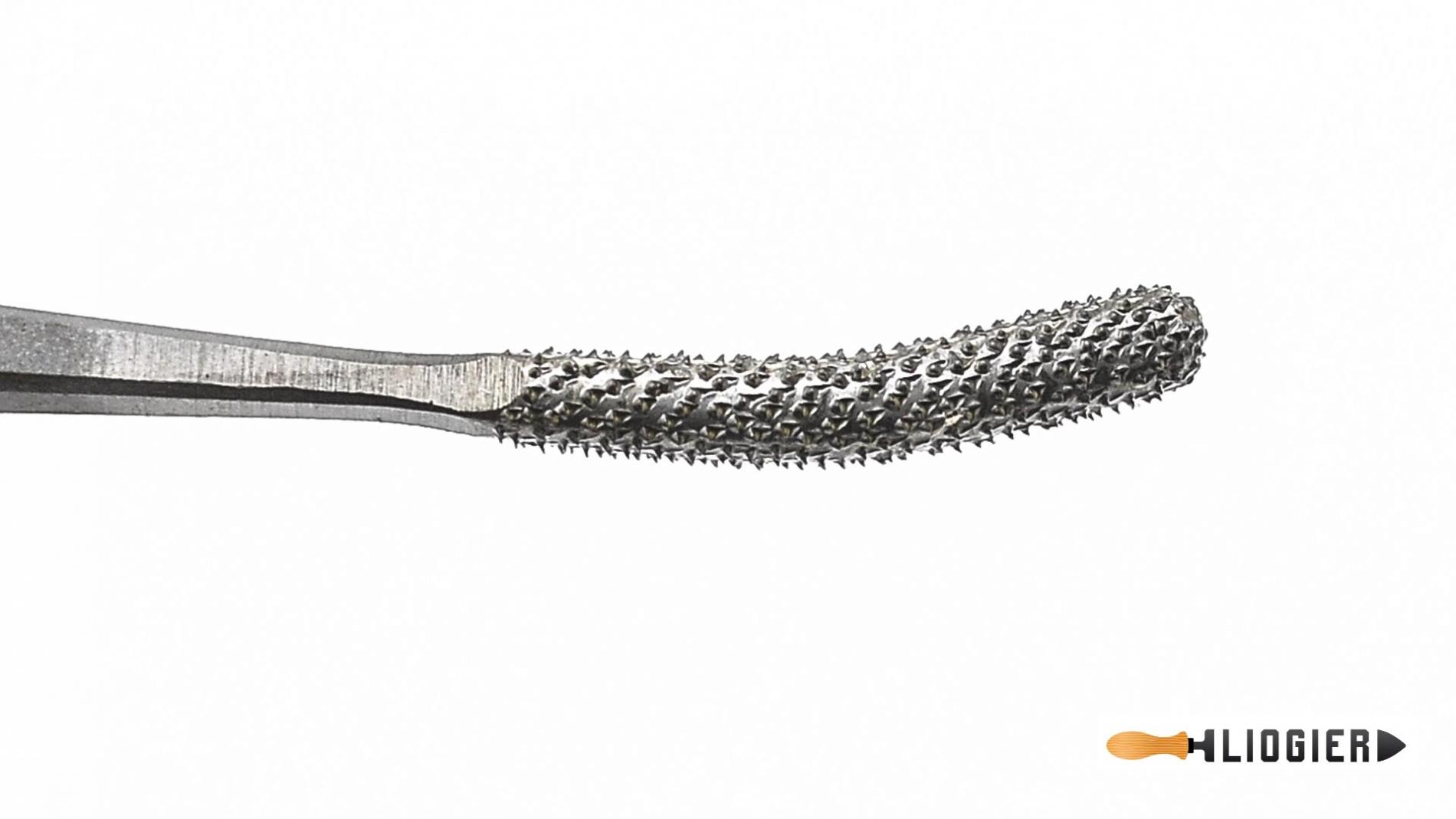 L150-8-15-Escofina de codillo 8 brocha y palo conico 150mm pique 15 Liogier L150-8-15-max-3.