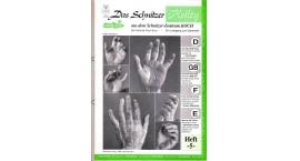 Koch_5-Revista KOCH 5 Aprende esculpir las manos.